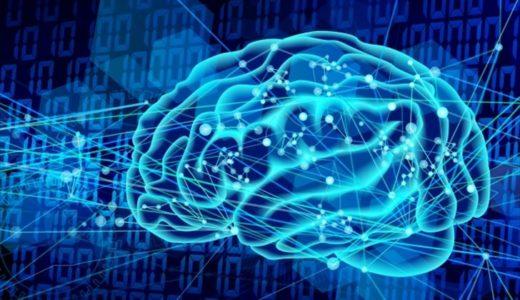 マインドフルネス瞑想の科学的根拠とは?